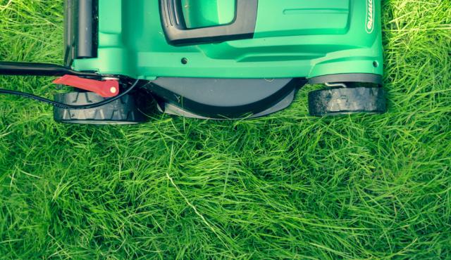 lawnmower grass